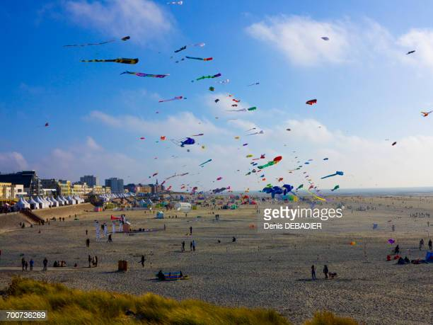france, northern france, pas-de-calais, berck sur mer, kite festival - hauts de france stock photos and pictures