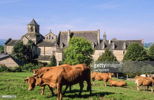france, nouvelle aquitaine, correze, aubazine - correze stock pictures, royalty-free photos & images