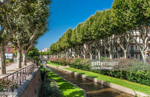 france, occitania, eastern pyrenees, perpignan, the canalized tt river - catalogne photos et images de collection