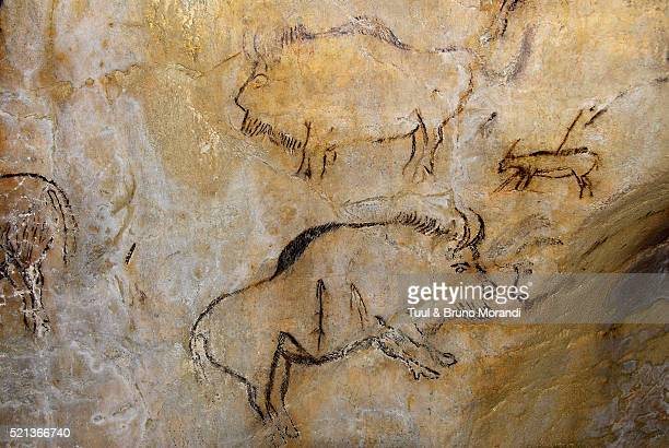 france, original painting in prehistoric cave of niaux - cave painting 個照片及圖片檔