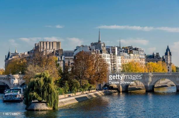 france, paris, 1st arrondissement, pont neuf on the seine river and square vert galant at the tip of l'ile de la cite - paris island stock photos and pictures