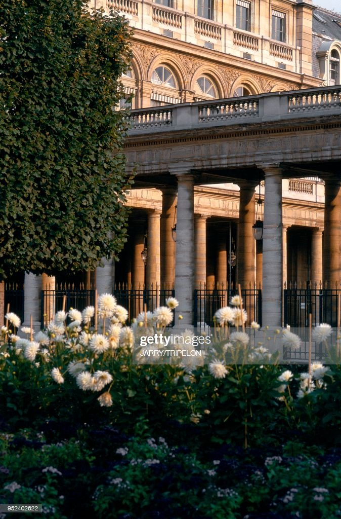 PARIS, LES JARDINS DU PALAIS ROYAL : News Photo
