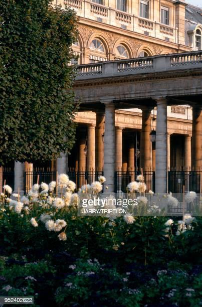 Paris 1st arrondissement the gardens at the Palais Royal France Paris 1er arrondissement les jardins du Palais Royal