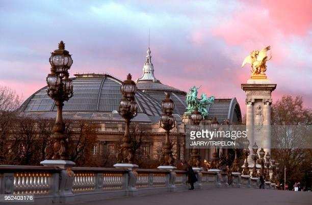 Paris 8th arrondissement the Grand Palais and the Alexander III Bridge France Paris 8ème arrondissement le Grand Palais et le Pont Alexandre III