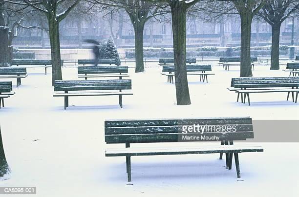 France, Paris, Ile de la Cite, Square du Jean XXIII in snow