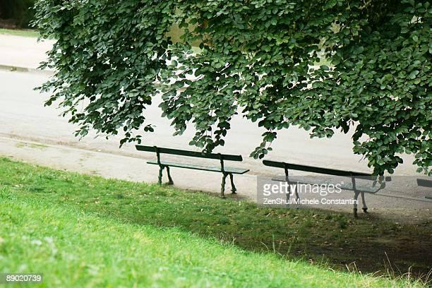 France, Paris, park benches under shady tree