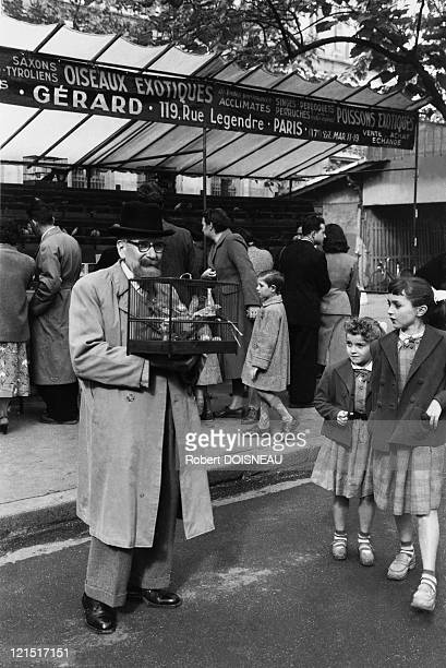 France Paris Place Louis Lepine Birds Market In 1958