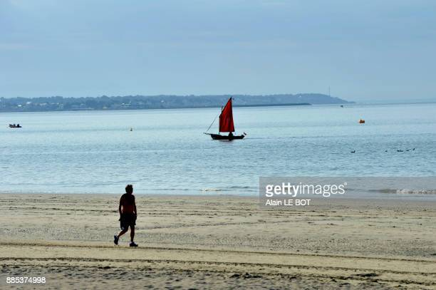 France, Pays de la Loire region, Loire-Atlantique department, beach and ship cruising in bay of La Baule, Pornichet in the background.
