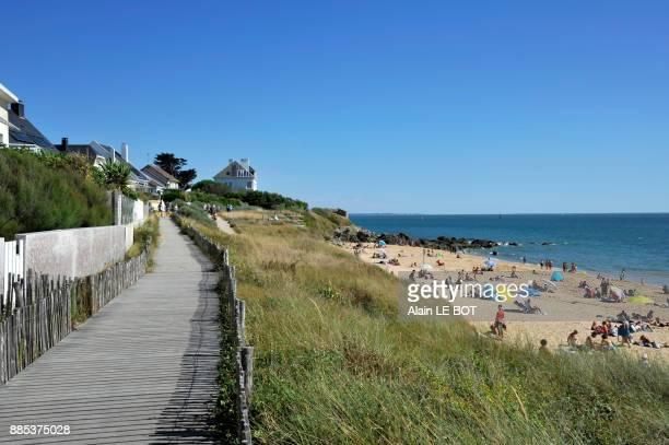 france, pays de la loire region, loire-atlantique department, beach of pornichet, dune protected. - loire atlantique photos et images de collection