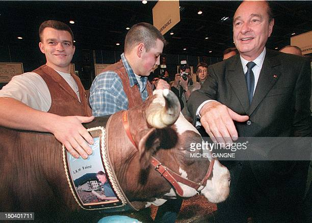 France President Jacques Chirac pets a cow 07 March as he visits the annual agricultural show at the Porte de Versailles in Paris The French...