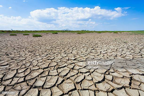 france, provence, camargue, view to eroded soil at marshland - sec photos et images de collection