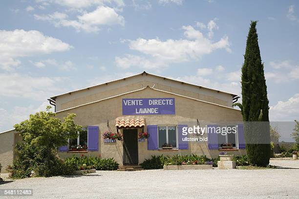 France Provence Département AlpesdeHauteProvence factory outlet selling lavender products near Valensole
