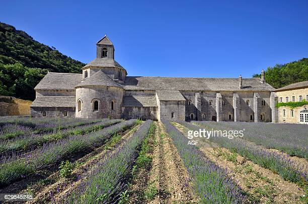 France Provence Gordes Senanque Abbey