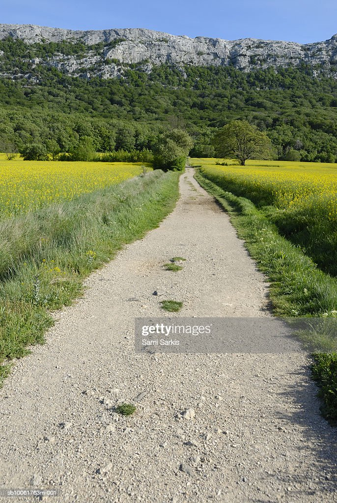 France, Provence, path leading to the Sainte-Baume Mountain : Stock Photo
