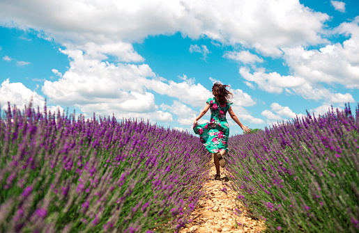 France, Provence, Valensole plateau, back view of woman running among lavender fields in summer - gettyimageskorea