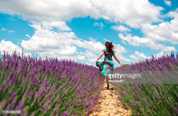 france, provence, valensole plateau, back view of woman running among lavender fields in summer - rushing the field stock pictures, royalty-free photos & images