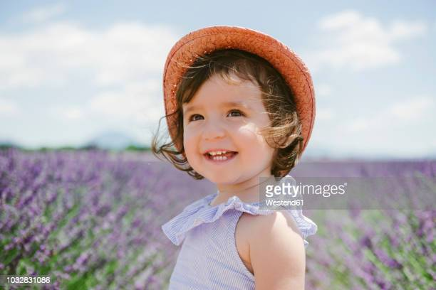 france, provence, valensole plateau, happy toddler girl in purple lavender fields in the summer - baby girls stock pictures, royalty-free photos & images