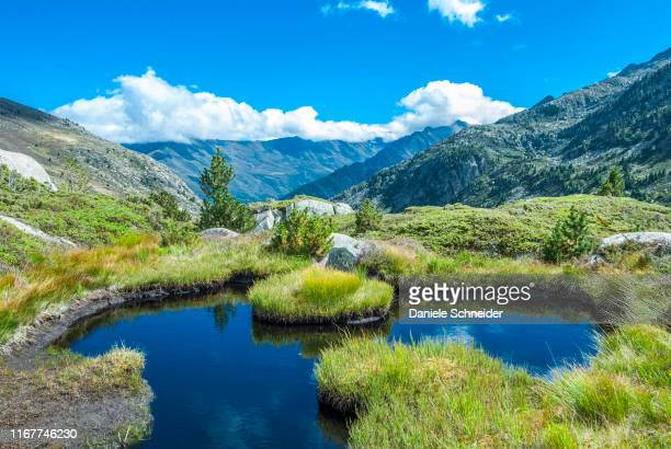 france, pyrenees ariegeoises regional nature park, pond on the bassies lakes hiking trail, gr 10 - アリエージュ ストックフォトと画像
