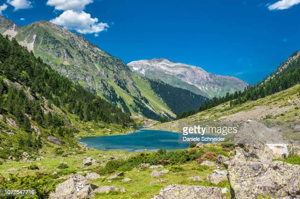 france, pyrenees national park, occitanie region, val d'azun, suyen lake (1,535m) on the gave d'arrens (name referring to torrential rivers, in the west side of the pyrenees) - pyreneeën stockfoto's en -beelden