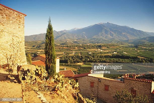 france, pyrenees, roussillon, vineyard by eus village - scène non urbaine photos et images de collection