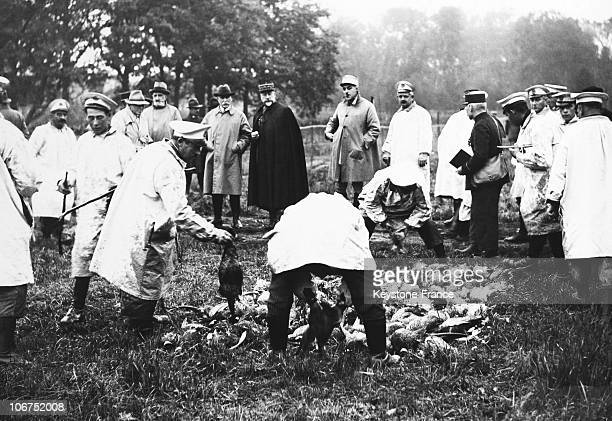 France, Rambouillet, Hunting Party With The Ministers And Diplomates, On October 25Th, 1933