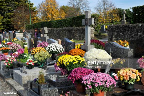 france, region of brittany, cemetery of the village at all saints' day, tombstones with flowers. - crosses with flowers stock pictures, royalty-free photos & images