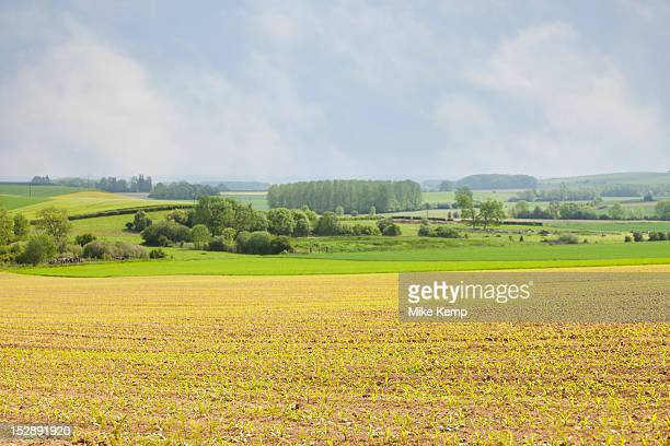 france, rocroi, rural landscape - ardennes department france stock photos and pictures