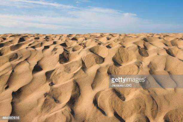 France, Saint-Nazaire, dune on the upper beach.
