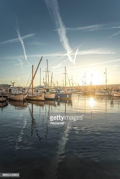 France, Saint-Tropez, marina at sunset