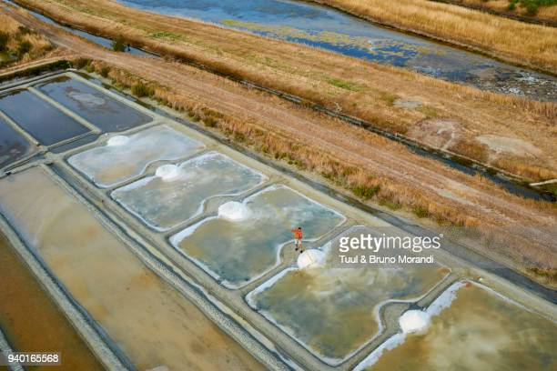 france, vendée, noirmoutier island, salt marshes - noirmoutier photos et images de collection