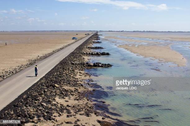 france, vendee, le passage du gois, submersible road leading to the island of noirmoutier, at low tide. - noirmoutier photos et images de collection
