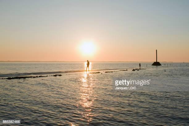 france, vendee, passage du gois, passable road at low tide. - noirmoutier photos et images de collection