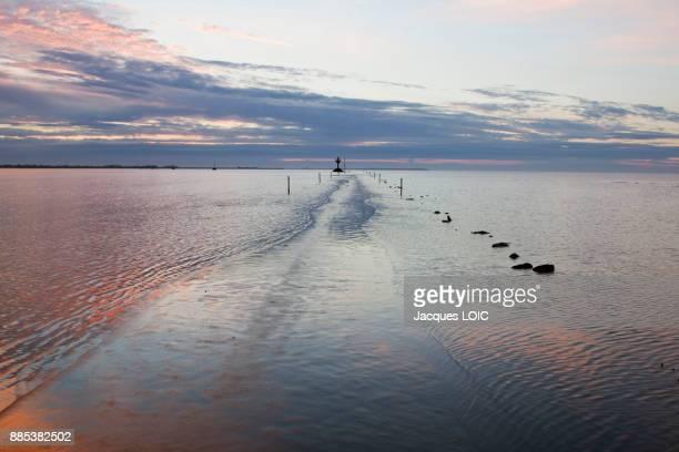 France, Vendee, Passage du Mois, passable road at low tide.