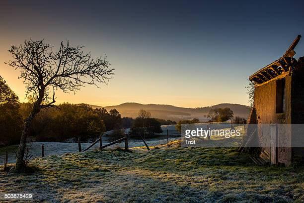 France, Vosges, View of landscape at dawn