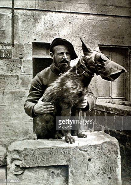 France World War I Health dog wearing a gas mask to protect it from gas fumes