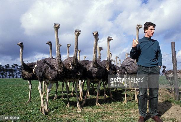 FranceAutruche sends 300 ostriches and 200 emus in France on April 15 1996