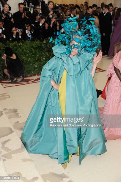 Frances McDormand attends Heavenly Bodies Fashion The Catholic Imagination Costume Institute Gala a the Metropolitan Museum of Art in New York City