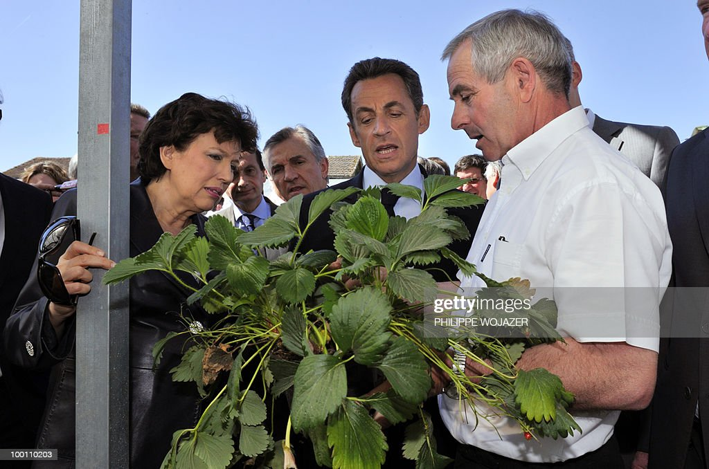 France's President Nicolas Sarkozy (C) and Health Minister Roselyne Bachelot-Narquin (L) look at a strawberry plant held by strawberry grower Philippe Blouin during a visit of his exploitation in Grezet-Cavagnan, south-western France, on May 21, 2010.