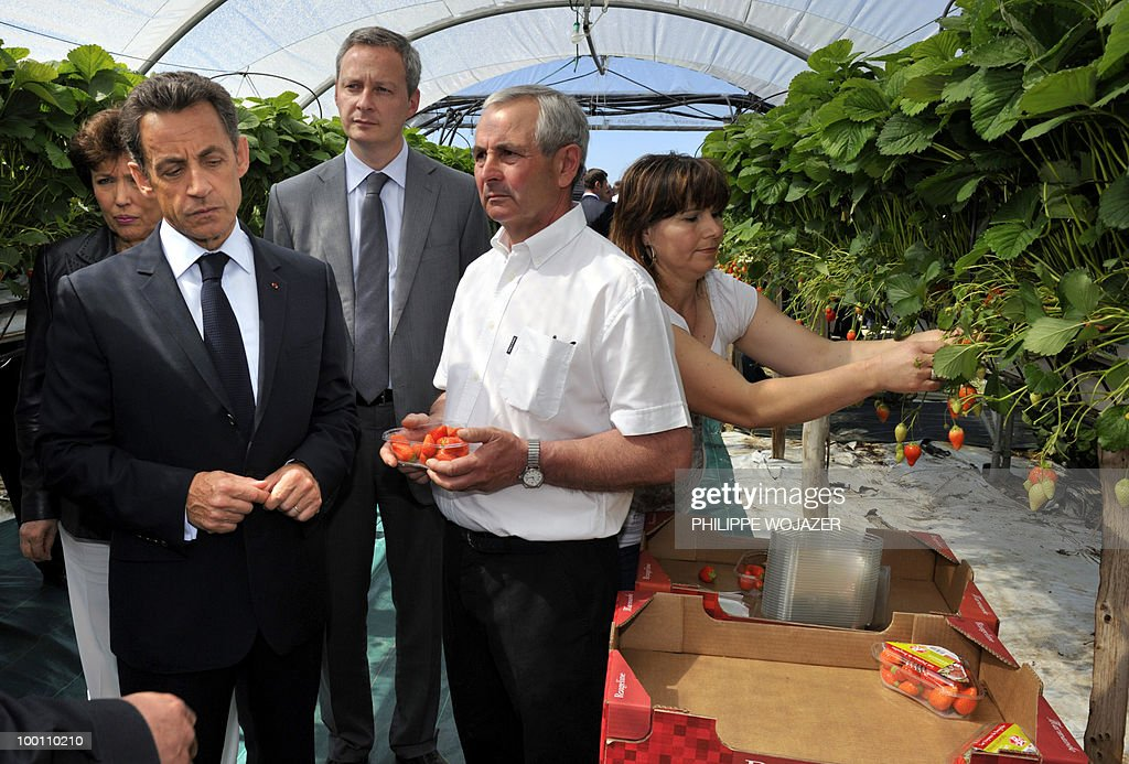 France's President Nicolas Sarkozy (2ndL), Health Minister Roselyne Bachelot-Narquin (L) and Agriculture Minister Bruno Le Maire listen to strawberry grower Philippe Blouin (2ndR) during a visit of his exploitation in Grezet-Cavagnan, south-western France, on May 21, 2010.