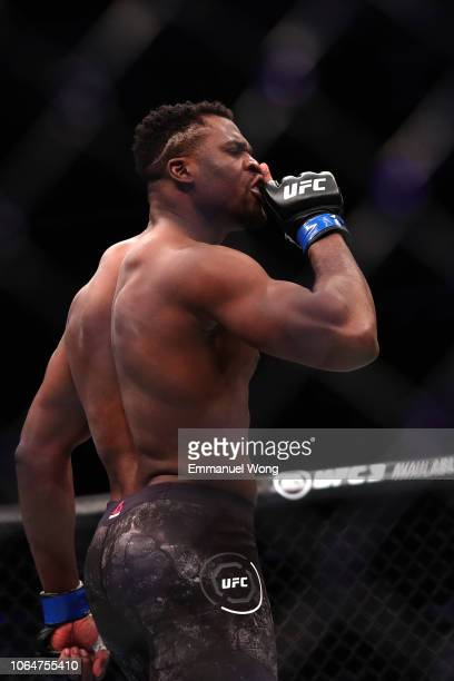 Francis Ngannou of Cameroon celebrates after his TKO victory over Curtis Blaydes in their heavyweight bout during the UFC Fight Night event at...