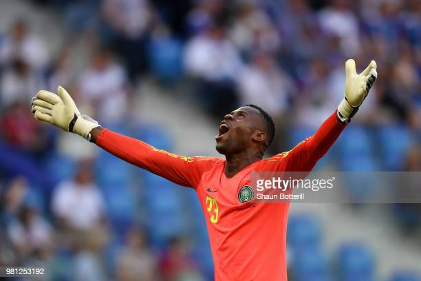 Francis Uzoho of Nigeria celebrates after his team's first goal during the 2018 FIFA World Cup Russia group D match between Nigeria and Iceland at...