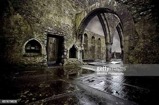 Franciscan Abbey Irish Church Ruins Graveyard