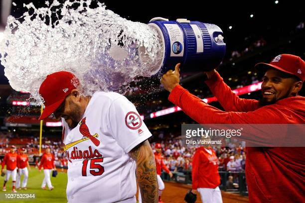 Francisco Pena of the St Louis Cardinals douses Matt Adams of the St Louis Cardinals after beating the San Francisco Giants at Busch Stadium on...