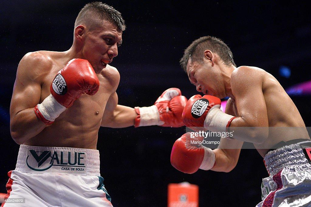 Francisco Rodriguez v Katsunari Takayama - IBF/WBO Minimumweight Unification Title : News Photo
