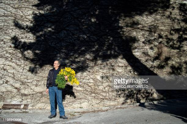 Franco Fogliarini president of the Cooperativa Agroflor holds a bouquet of Mimosa flowers in Seborga northwestern Italy on February 5 2020 Workers in...