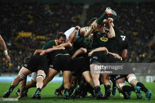 Franco Mostert of South Africa is lifted up in the maul during The Rugby Championship match between the New Zealand All Blacks and the South Africa...