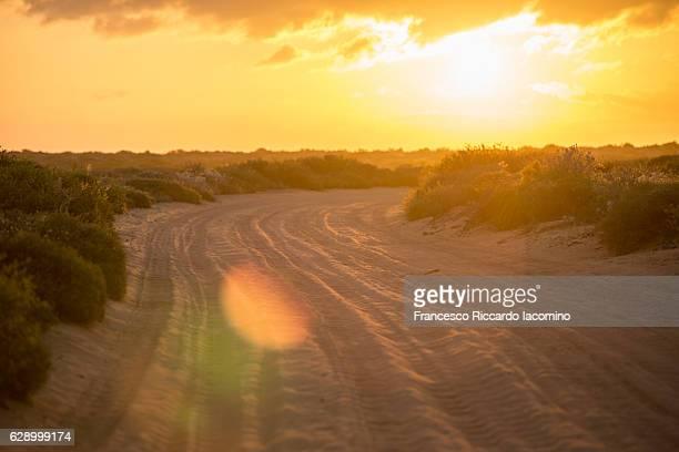 francois peron national park, australia - francesco riccardo iacomino australia foto e immagini stock