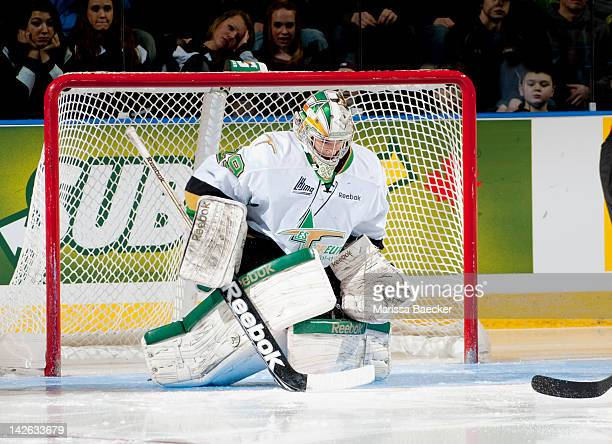 60 Top Quebec Major Junior Hockey Pictures, Photos, & Images