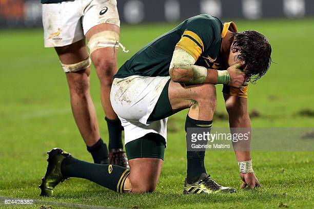 Francois Venter of South Africa reacts during the international match between Italy v South Africa at Stadio Olimpico on November 19 2016 in Rome...