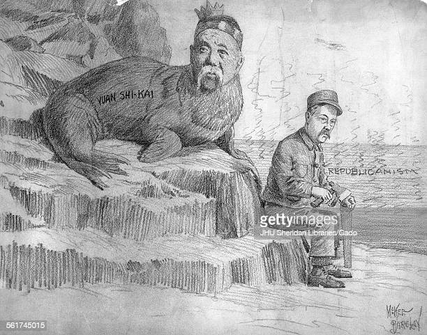 Frank Johnson Goodnow political cartoon with Chinese President Yuan Shihk'ai who has the body of a walrus portrayed as a carpenter Goodnow who had...